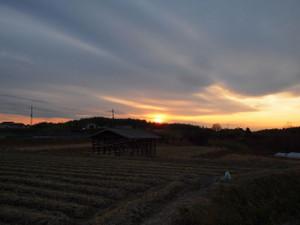 Oshima_001_2
